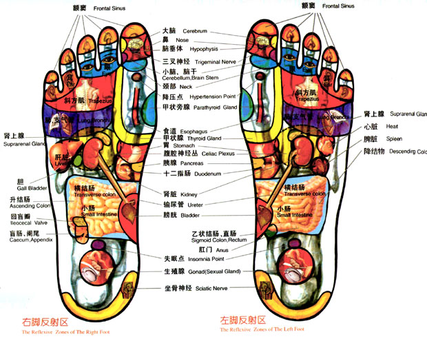 Magical foot spa chinese foot massage in boise idaho foot massage principle the internal organs of your body have reflex zones in your feet when we use massage to stimulate the reflex zones it will keep ccuart Image collections